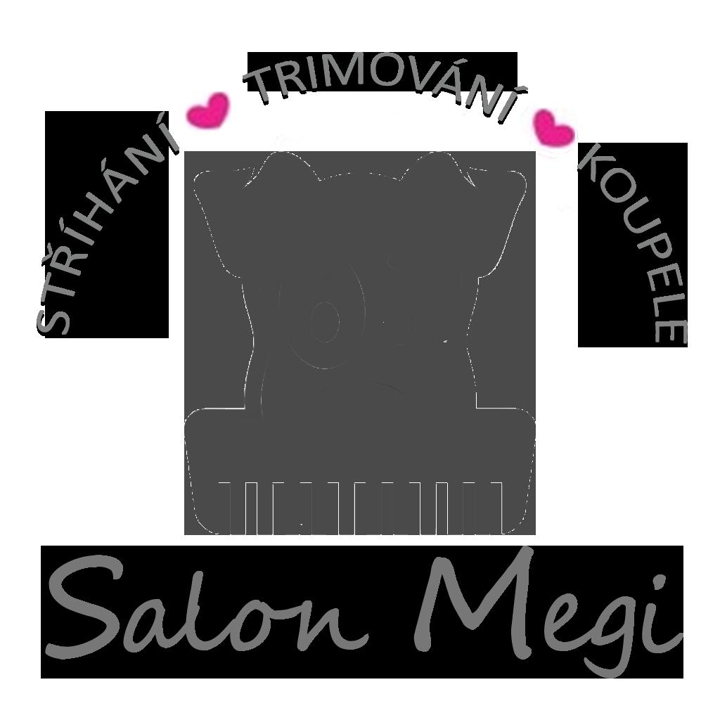 PsiSalonMegi Logo